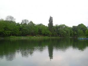 『中島公園の畔』