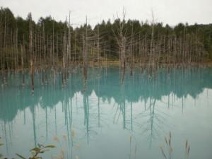 『幻想的な青の池』